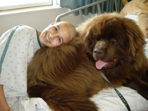 Echo, another therapy dog (or bear!) also visited me my third round