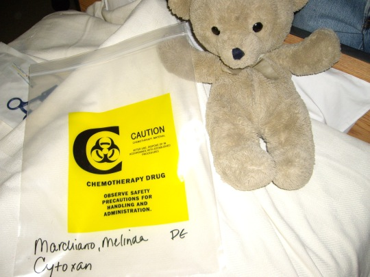 Bear and Chemo Bag